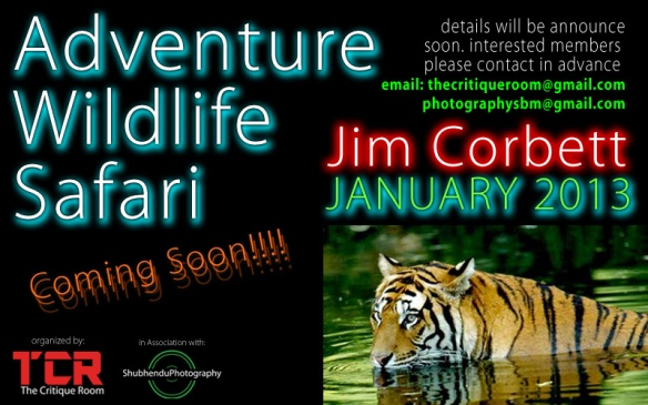 Adventure Wildlife Safari: Jim Corbett JANUARY 2013