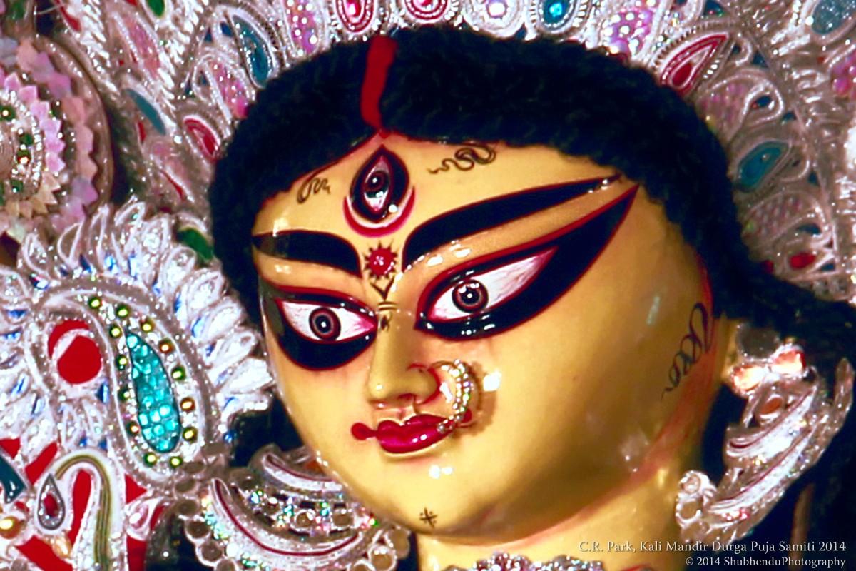 C.R. Park Durga Puja 2014, New Delhi